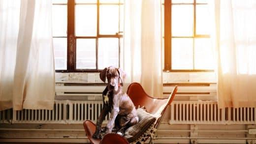 Amenez le confort dans vos bureaux avec des sièges ergonomiques