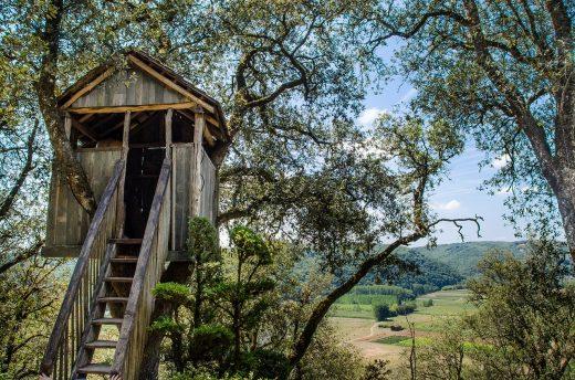Comment construire une maison dans les arbres ?