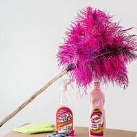 Comment trouver la meilleure entreprise de nettoyage à Nice ?