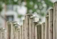 Pourquoi acheter ses clôtures de jardin en ligne ?